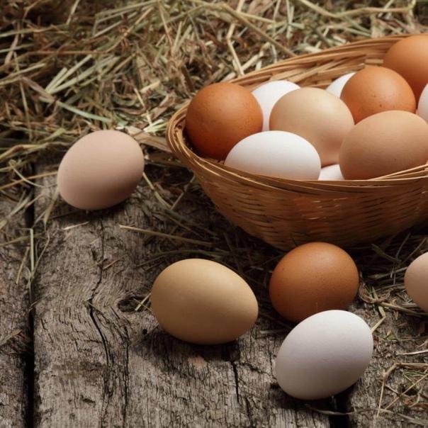 Анонимно. Продам домашние куриные яйца. Крупные. Ц...