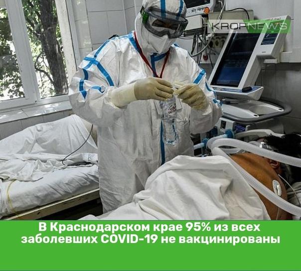 В Краснодарском крае 95% из всех заболевших COVID-...