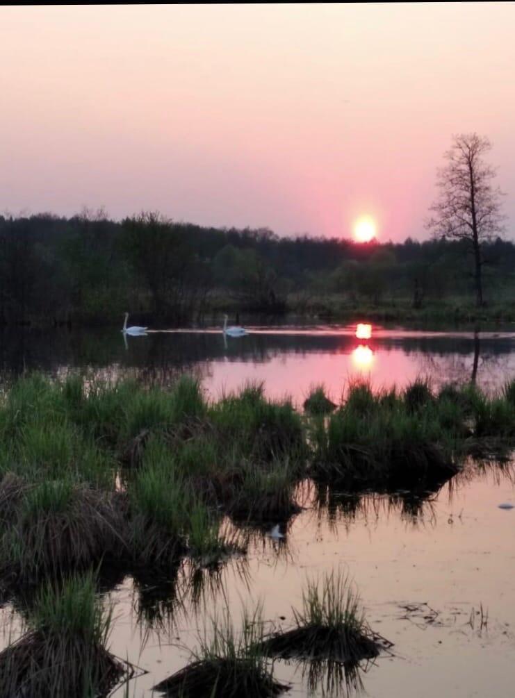 Закат солнца остается одним из самых красивых