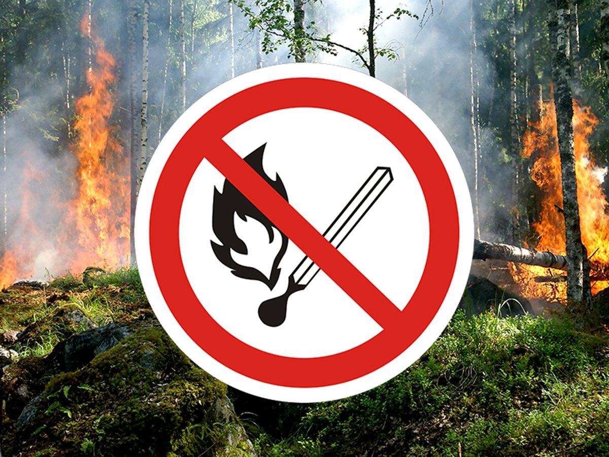 Администрация города Донецка напоминает о необходимости соблюдения правил пожарной безопасности на отдыхе