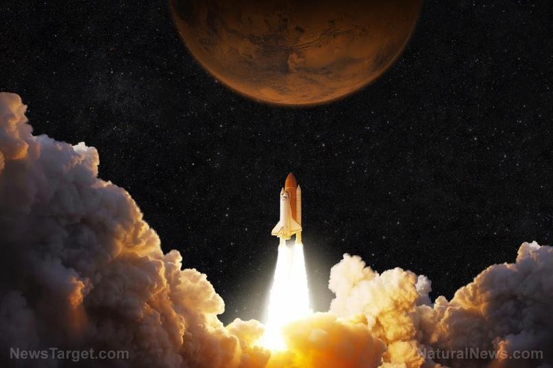 НАСА обнаружило жизнь на Марсе 45 лет назад, но скрыло это из политических соображений, изображение №4