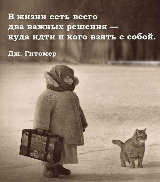 фото из альбома Елены Голубевой №8