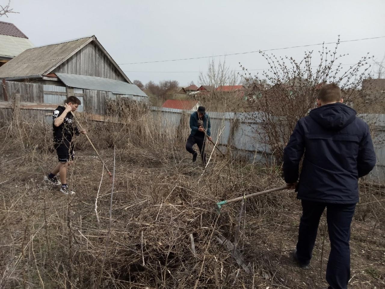 Волонтёры продолжают помогать пожилым петровчанам