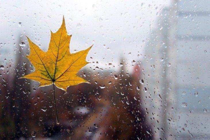 Пятница обещает быть дождливойДождь будет идти с