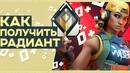 Бандурка Дмитрий   Калининград   11