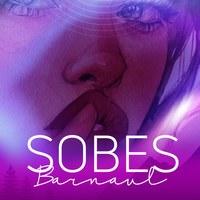 Логотип SOBES (Закрытая группа)