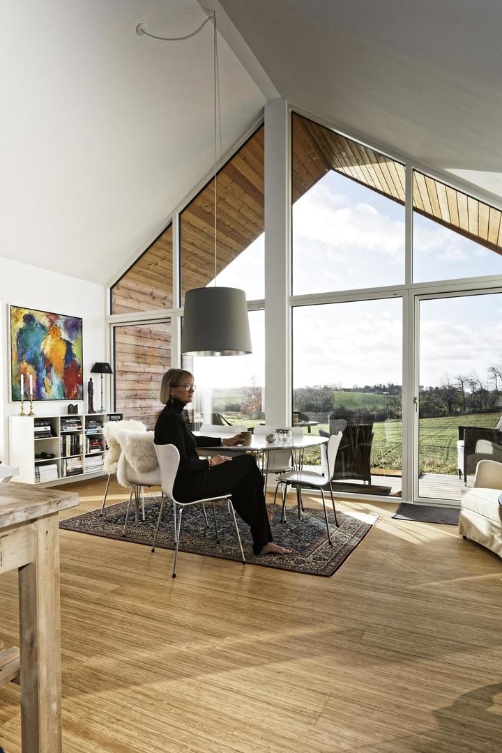 Экологичный дом в Дании