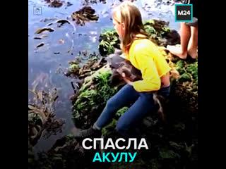 В Австралии 11-летняя девочка спасла акулу  Москва 24