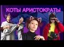 х/ф Коты аристократы реж. Джулианна Григонтино