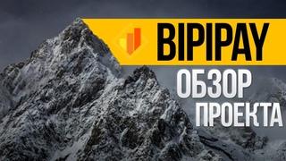 ОБЗОР BIPIPAY LTD - НОВЫЙ ДОСТОЙНЫЙ ИНВЕСТИЦИОННЫЙ ПРОЕКТ! СТРАХОВКА 400$