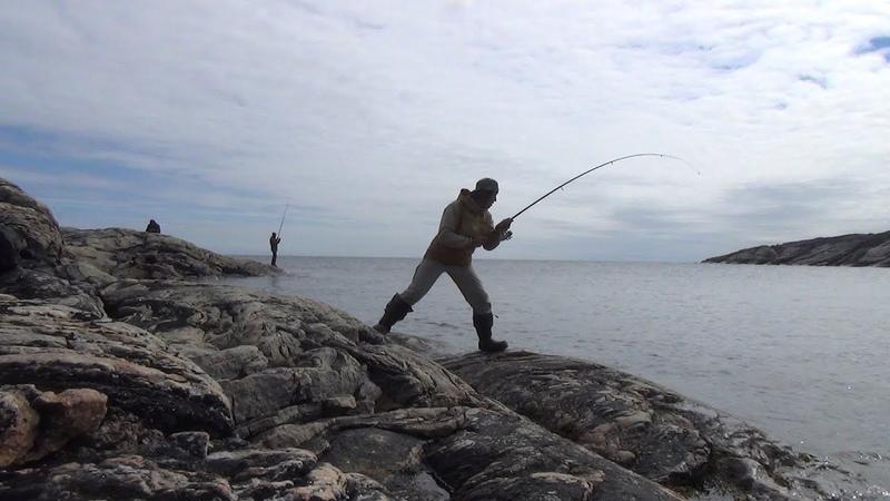 Карелия За семью озёрами да семью волоками море Белое трескою полнится 2 часть