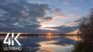 8 HRS of Gentle Lake Sounds and Birds' Songs - 4K Sunset over Basiv Kut Lake, Rivne Region, Ukraine