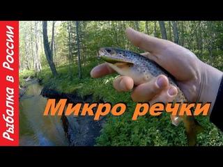 Ловля ручьевой форели (пеструшка) на спиннинг.  Ультралайт на малых реках