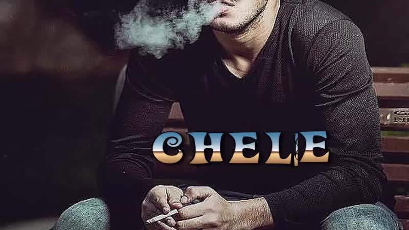Chele ksusha