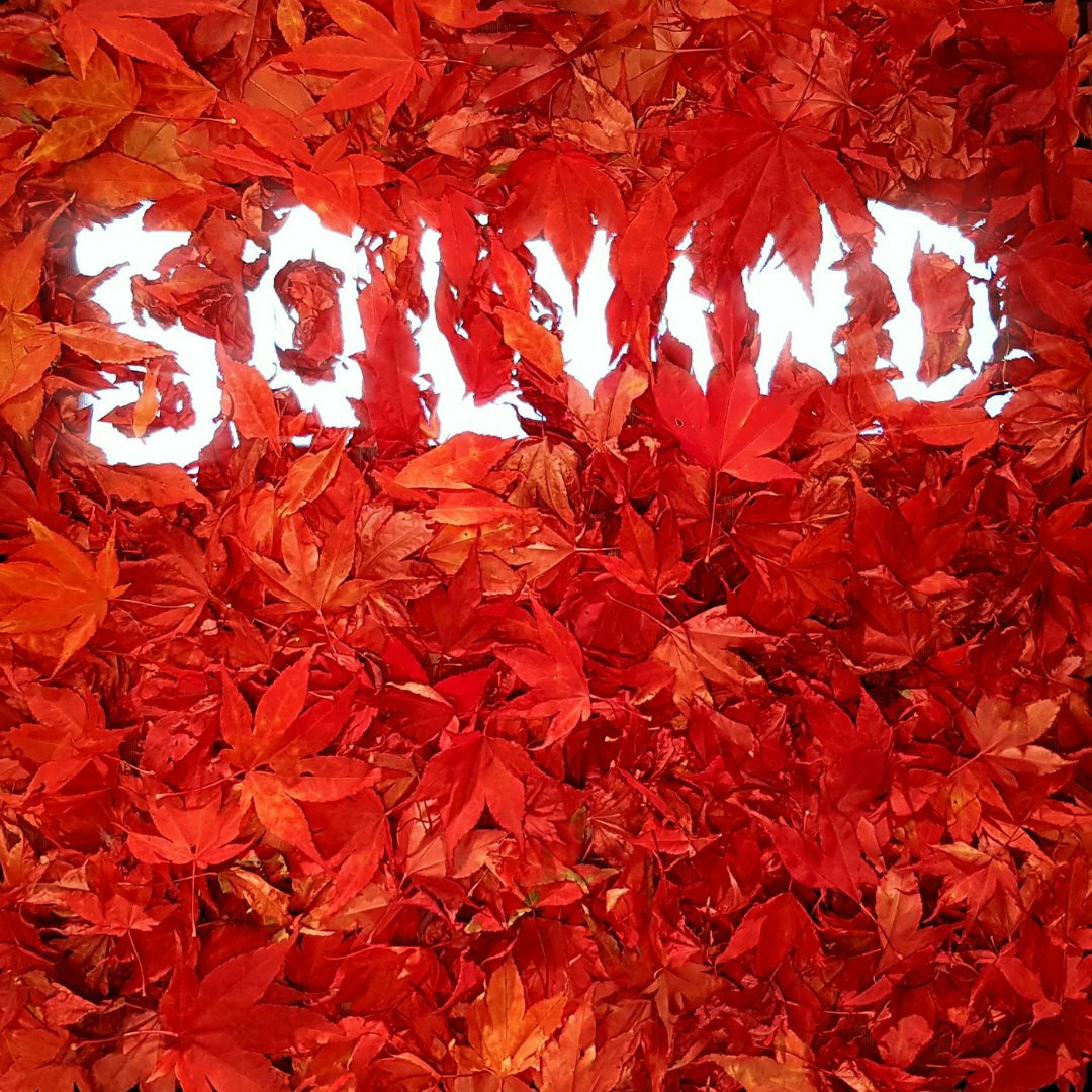 Solvind - Sundance Kids
