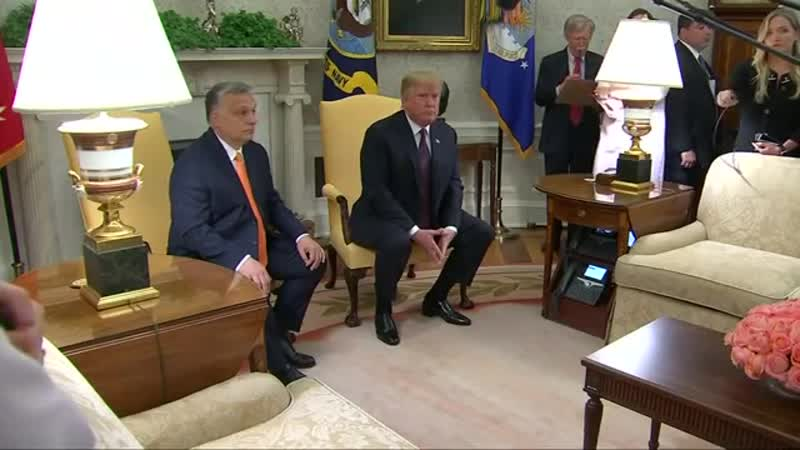 Besuch in Washington- Trump lobt Ungarns Präsidenten Orban