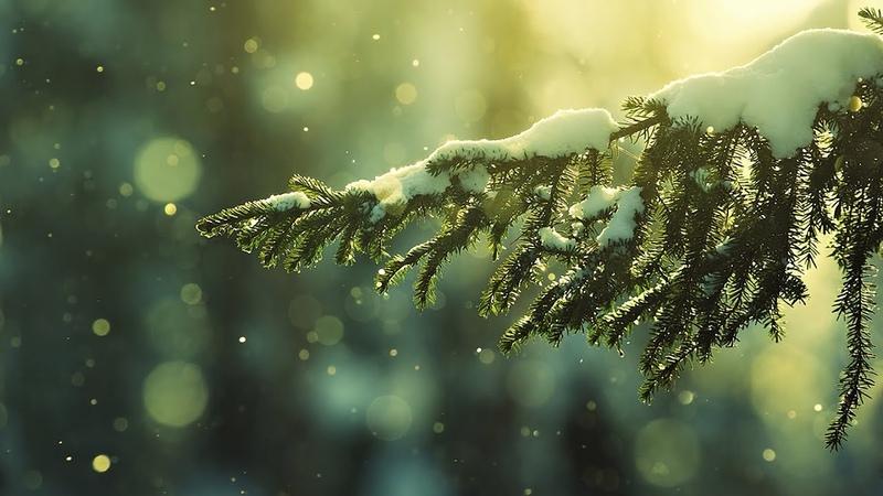 День Зимнего Солнцестояния Коляда Святки Рождество Нардуган