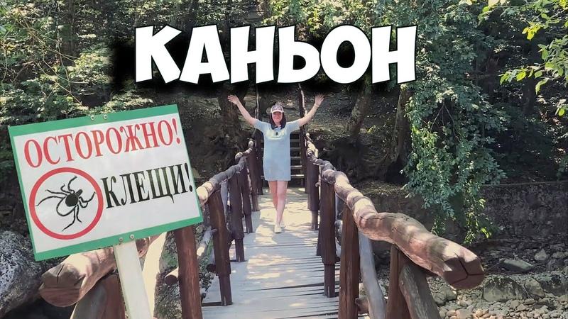 Прогулка в Большой Каньон Будет тебе и ванна будет и молодость только клещей сними с себя Крым