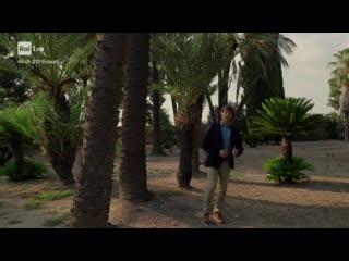 202 Ulisse - Il Gattopardo Il romanzo della Sicilia