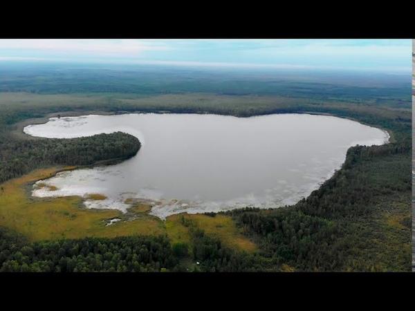 Озеро Светец сердце болот Мещеры Заповедная Россия Мещера Релаксация Lake Svetets