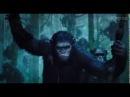 Рассвет планеты обезьян Dawn of the Planet of the Apes 2014