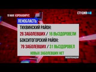 Коронавирус: информация по Бокситогорскому району на 19 мая