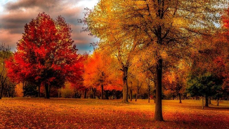 Сборник красивой музыки для души (осень)